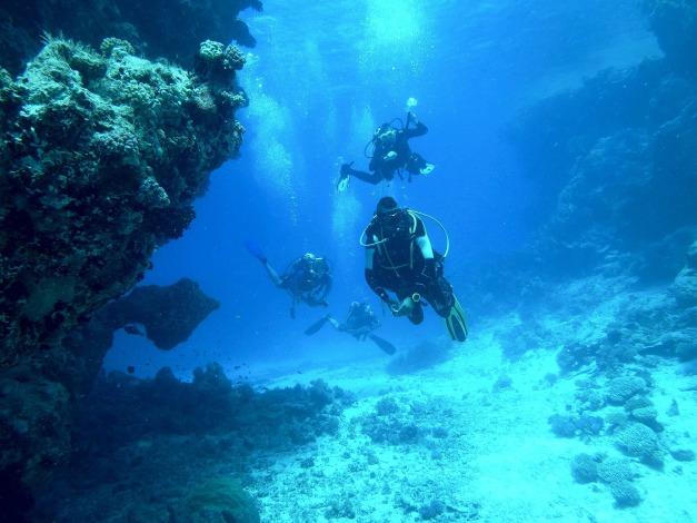 diving-813028_1920